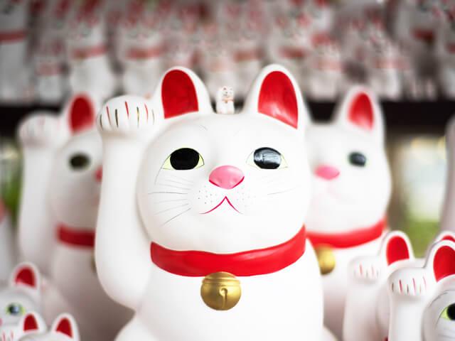 金運風水招き猫