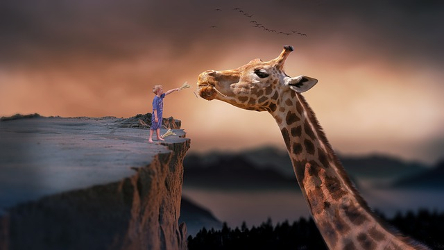 【壁を乗り越える子ども】なぜファンタジー体験が大切なの?