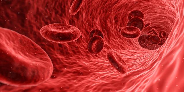 【血液型ダイエット】痩せない理由は、血液型に関係していた!?