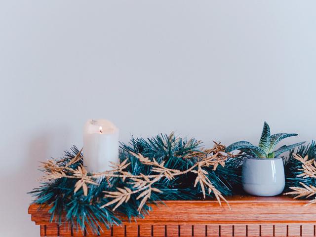 夫婦円満風水ポイントリビング観葉植物