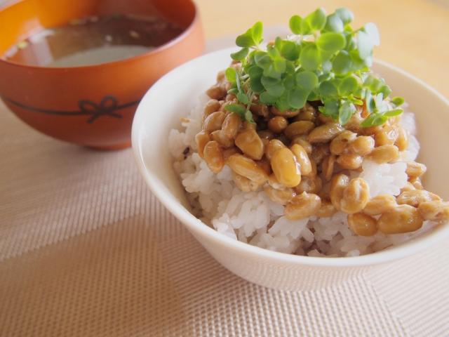 マグネシウムを食事から摂るなら大豆製品