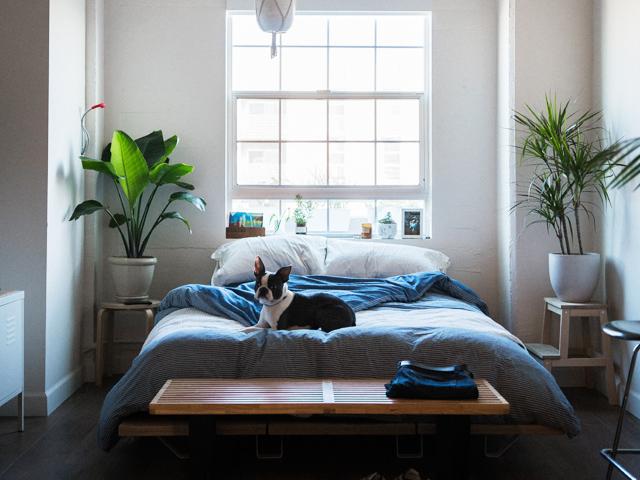 夫旦那出世風水ベッドルーム寝室寝具