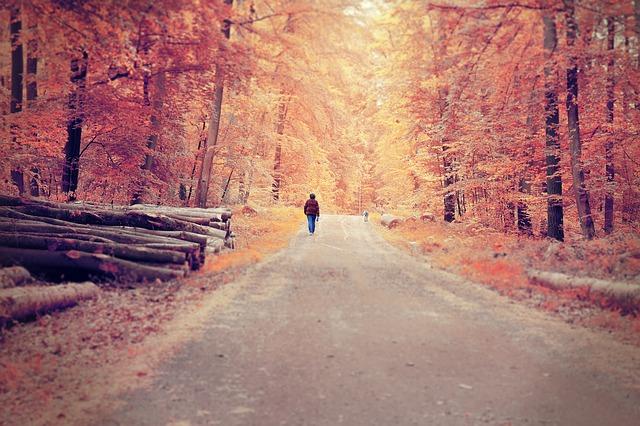2018年秋の開運日を公開! 吉方位旅行で望みの運を味方につける