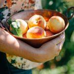 桃スタミナ 栄養 夏バテ