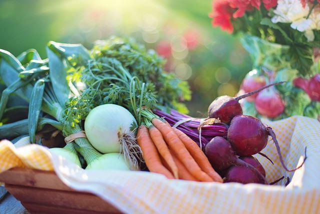春野菜特徴