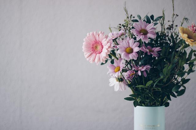 風水運気アップ観葉植物の置き場所玄関花瓶