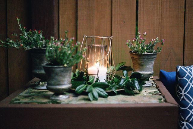 風水運気アップ観葉植物の置き場所寝室
