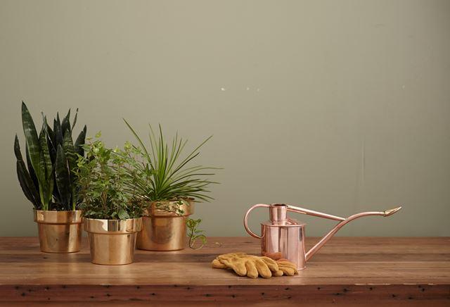 :風水仕事運アップ部屋机椅子アイテム観葉植物