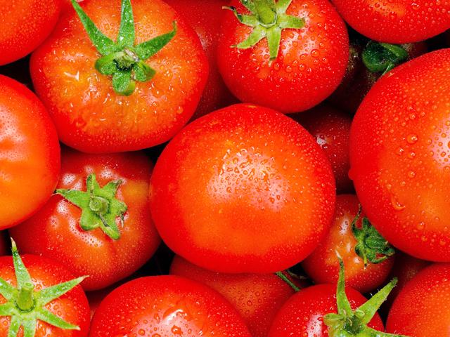 トマトダイエット効果効能