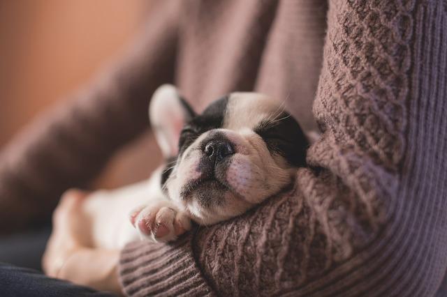 寝不足ママのために、短時間でも睡眠の質を上げる方法