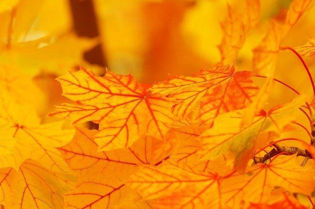 開運ネイルカラーオレンジ橙色