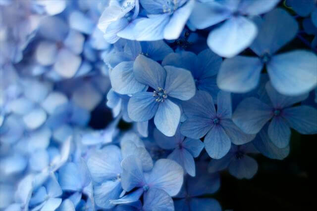 開運ネイルカラーブルー青色