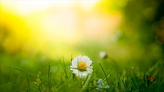 新生活簡単風水お悩み別の開運方法気の流れ