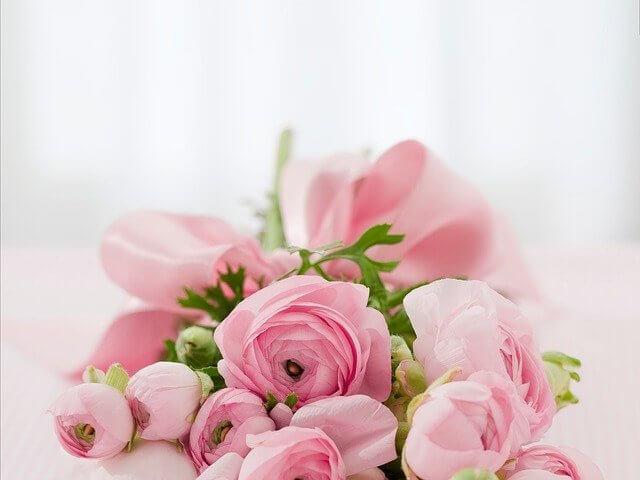 風水花種類バラ