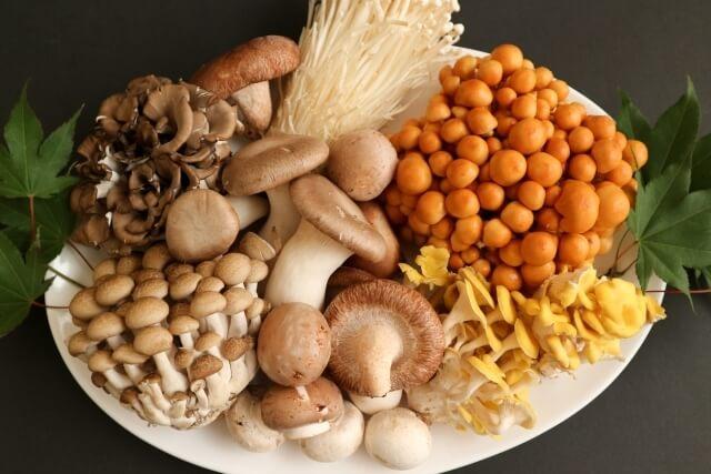食べ物風水10月に食べたい開運フードきのこ類