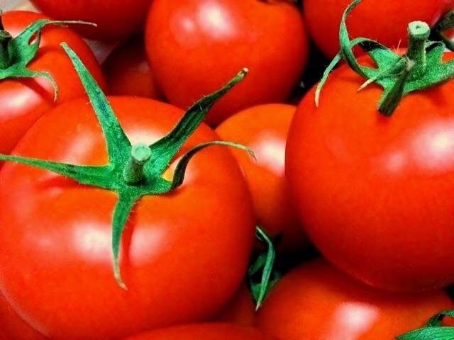 食べ物風水7月に食べたい開運フードトマト