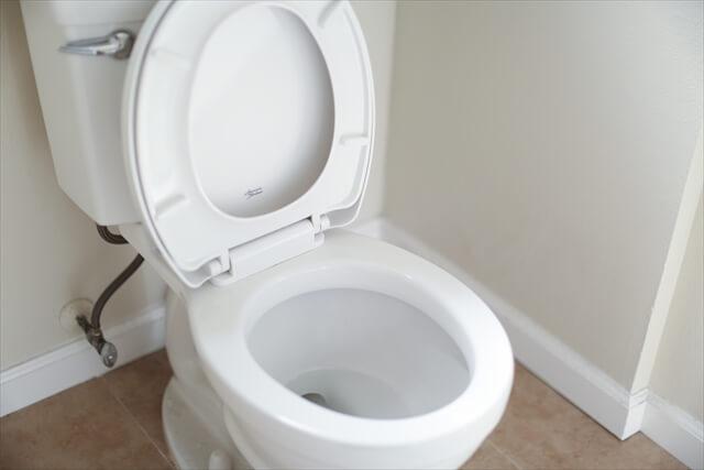 簡単風水トイレ掃除で開運